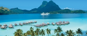 Hawaii & Exotic Cruises